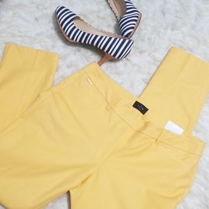 Sz 10 Pants WHBM Slim Ankle Stretch Yellow NWT